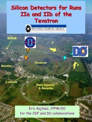 Silicon Detectors for Runs IIa and IIb of the Tevatron - Solid State ...