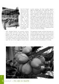 Coconut - Secretariat of the Pacific Community - Page 5