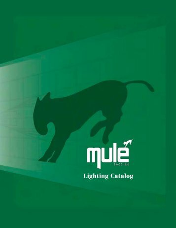 Mule Lighting Catalog