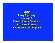 Lecture 3 in PDF