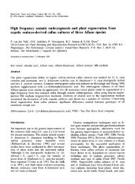 High frequency somatic embryogenesis and plant regeneration from ...