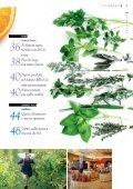 I profumi dell'orto in cucina - B2B24 - Il Sole 24 Ore - Page 5