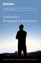 Auditoria y Diagnostico Ambiental - Deloitte Chile