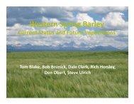 Western Spring Barley - American Malting Barley Association, Inc.