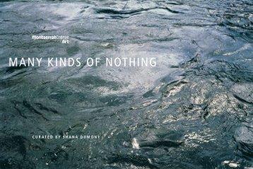 Many Kinds of nothing - Icompendium