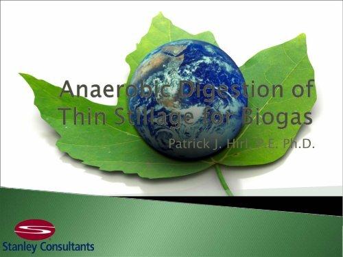 Anaerobic Digestion of Thin Stillage for Biogas