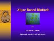 Joanne Godfrey, technical sales representative for Ethanol ...
