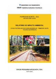 FERROVIA NORTE-SUL - Relatório de Impacto Ambiental - Dnit