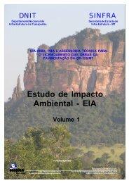EIA_BR_158_MT_Volume 1.pdf - Ibama