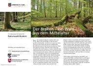 Der Braken – ein Wald aus dem Mittelalter - zurück