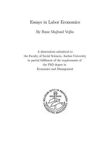 Extended Essay Plan Economic Consequences Of   Charterhouse Essays In Labor Economics  School Of Economics And