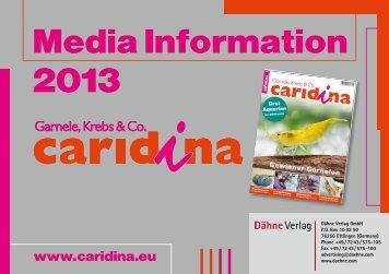 Media Information 2013 - DIYonline