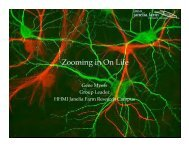 Zooming in On Life - Computing Research Association