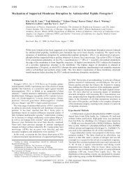 Mechanism of Supported Membrane Disruption by Antimicrobial ...
