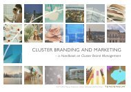 Cluster Brand Management