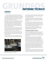 INFORME TÉCNICO - Grundfos