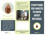 EVERYTHING YOU WANTED TO KNOW ABOUT BED BUGS.