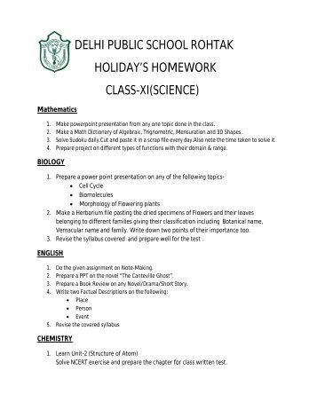 dav public school rohtak holiday homework