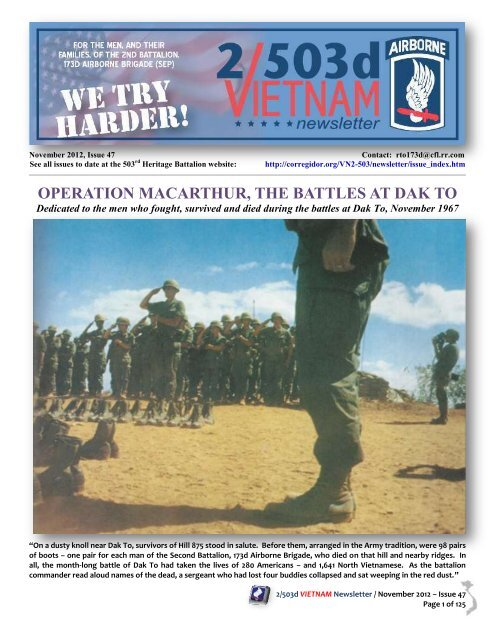 VETERAN 173RD AIRBORNE BRIGADE ARMY Metal License Plate Frame Tag Border