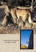AFRICAN ADVENTURE - Gula Sidorna på eniro.se - Page 2