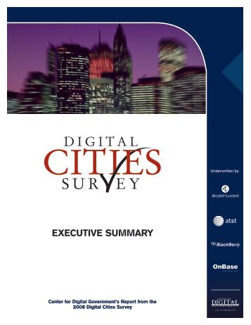 2008 Digital Cities Survey Executive Summary
