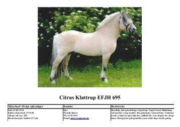 Citrus Klattrup EFJH 695