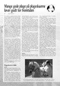 nr. 183 - Fjordhesten Danmark - Page 6