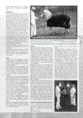 nr. 183 - Fjordhesten Danmark - Page 7