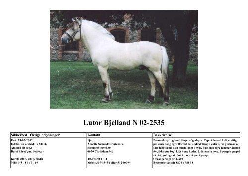 Lutor Bjelland N 02-2535