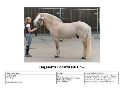 Højgaards Bacardi