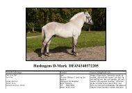 Hashagens D-Mark
