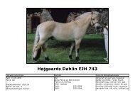 Højgaards Dahlin