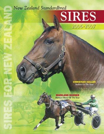 Stallions - Harnesslink