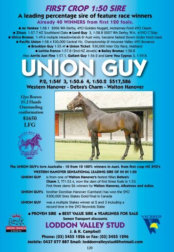 UNION GUY - Harnesslink