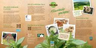 """""""Earth Day"""" am 22. April! Klimaleicht genießen! - Aramark"""