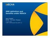SME definition and benefits under REACH - ECHA - Europa