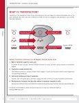 TRANSFECTION REAGENTS - BioNova - Page 2