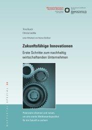 WS30.pdf - Wuppertal Institut