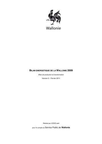 Bilan Production et Transformation 2009 - Energie Wallonie