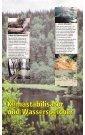 Runter vom Holzweg - ARA - Seite 7