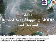 3. Luigi Boschetti - Global Burned Area Mapping: MODIS and Beyond