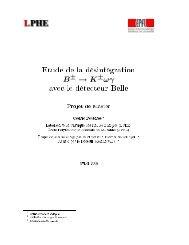 Fichier PDF: 1.2 Mbytes - Laboratoire de Physique des Hautes ...