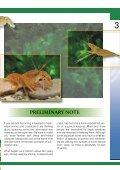 Crustacea and shrimp in freshwater aquarium(1.71MB) - Page 3