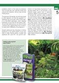 Crustacea and shrimp in freshwater aquarium(1.71MB) - Page 5