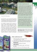 Crustacea and shrimp in freshwater aquarium(1.71MB) - Page 7
