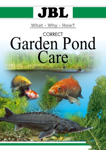 Water gardening maidenhead aquatics for Outdoor fish pond care