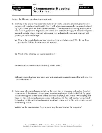 Printables Chromosome Mapping Worksheet chromosome worksheet answers davezan versaldobip
