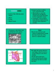 Circulatory System Consists of the following main organs: 1. Heart 2 ...