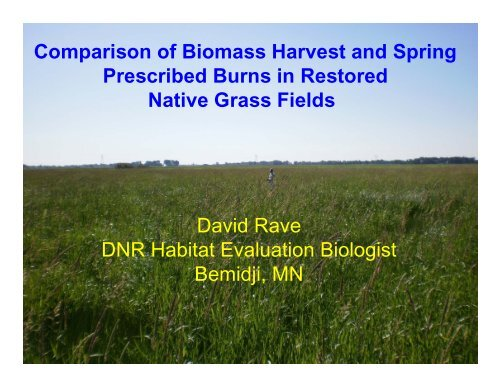 Comparison of Biomass Harvest and Spring Prescribed Burns in ...