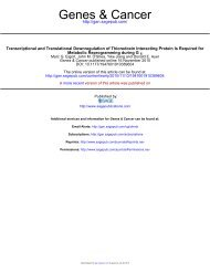 Transcriptional and Translational Downregulation ... - Genes & Cancer